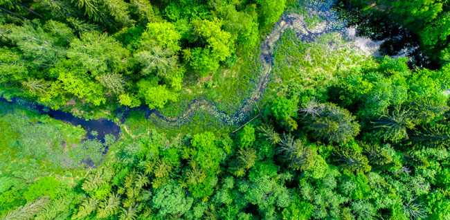 Automha per l'ambiente